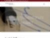 Rechtsanwalt Rechtsanwaltskanzlei Dürichen, Familienrecht, Erbrecht, Verwaltungsrecht, Arbeitsrecht, Gerbergasse 4, 01662 Meißen